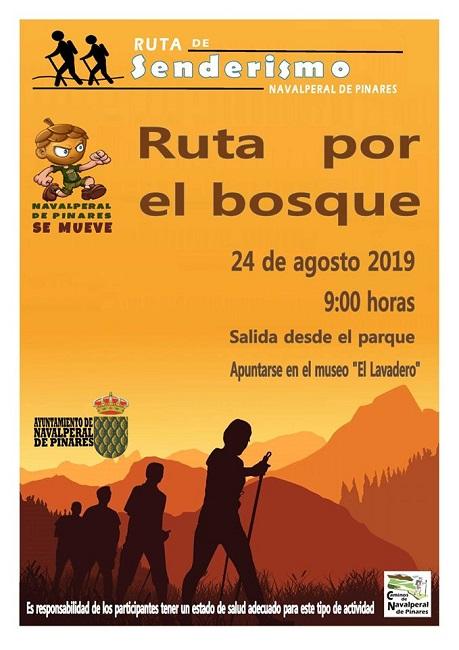 Senderismo - Ruta por el Bosque @ Parque Municipal - Navalperal de Pinares